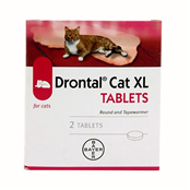 Picture of Drontal Cat XL Tablets 2's - 329-7504