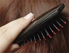 Picture for category Hair Brushes